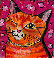 """Bubbly Cat"" by Jane Diamond"