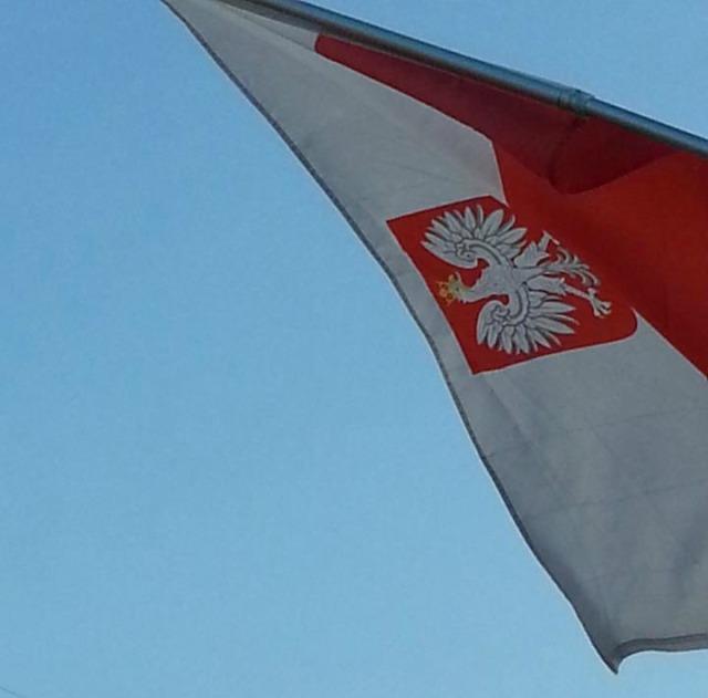 Polish Flag 2